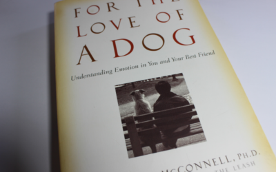For the love of dog, understanding emotion in you and your best friend