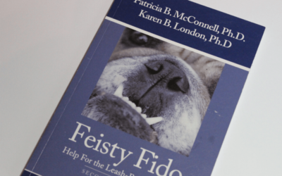 Feisty Fido, help for the leash-reactive dog