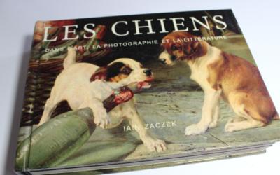 Les chiens dans l'art, la photographie et la littérature